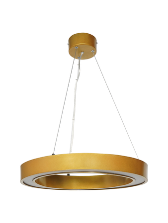 Modern Oval 30W 4000K LED Profile Golden Pendant Light
