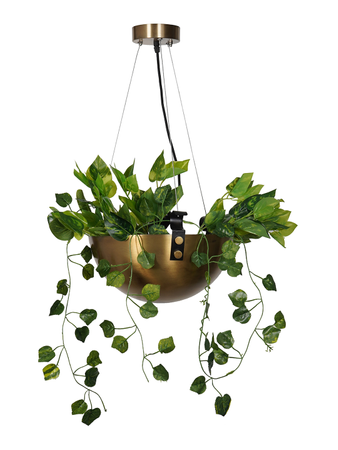 Planter Bowl Hanging Pendant Light in Antique Brass Finish